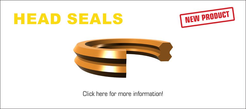 Head Seals