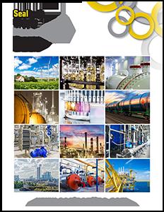 Gasket Brochure Thumbnail